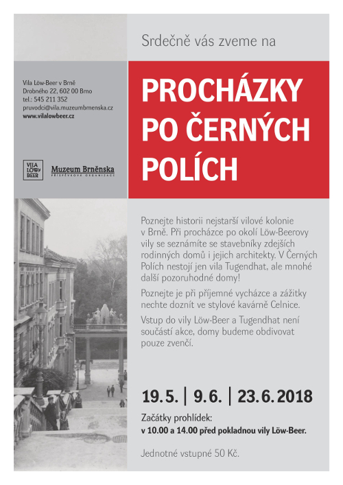 low beer prochazky cerna pole
